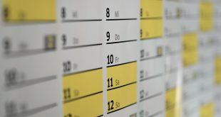 Il calendario scolastico 2019 ricco di ponti e feste