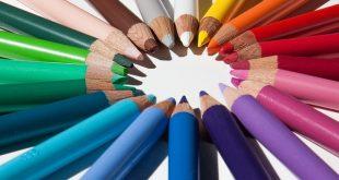 Collegio docenti: cos'è, da chi è formato, funzioni e normativa