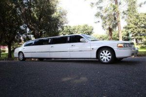 Limousine bianca